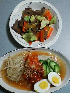 4月8日の夕ご飯:盛岡冷麺