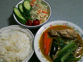 9月5日の夕ご飯:鶏手羽元と茄子のレッドカレー